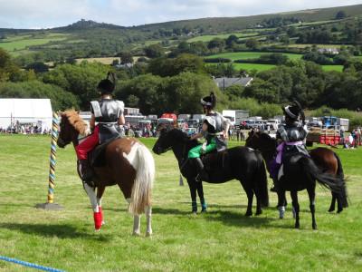 Dmoor Hill Pony team