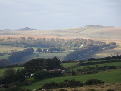 Higher White and Longaford tors from Merripit Hill
