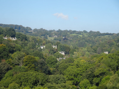 Lustleigh in the Wray Valley