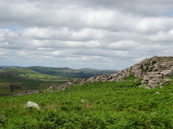 Editor's Blog | Dartmoor Magazine | People, places and pursuits on